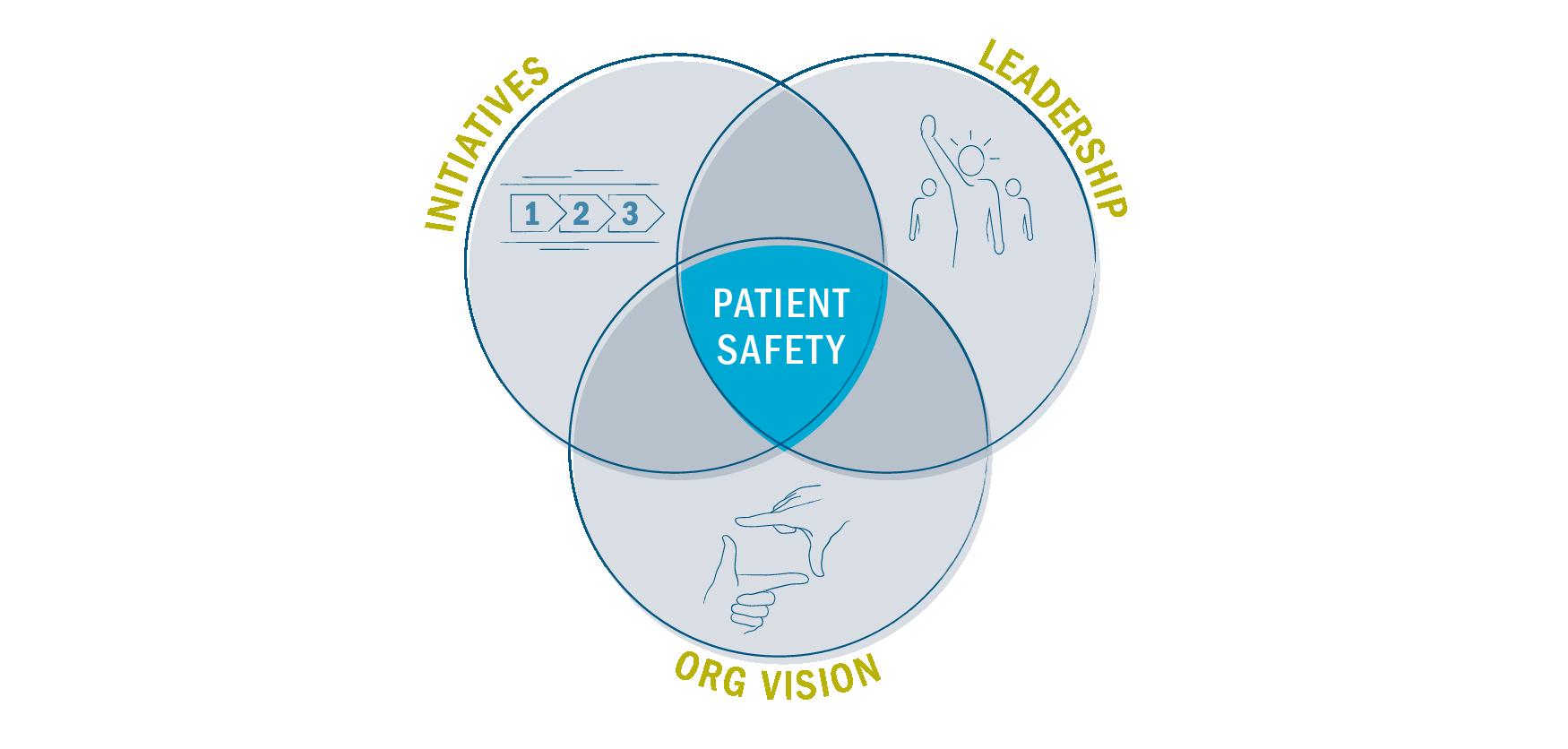 Venn diagram of patient safety factors